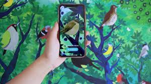 Birdie Memory Numok